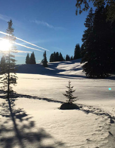 Snow Shoeing on the Grand Mesa