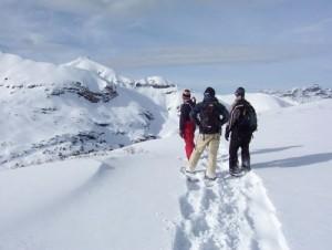 snowshoeing grand mesa